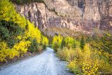 Black Bear Road to Telluride print