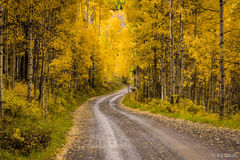 Lost Lake Road,Uncompahgre National Forest