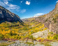 fall, Telluride, Uncompahgre National Fortest, Colorado