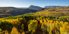 fall, autumn, aspen, Ruby Anthracite Creek, Marcellina Mountain, Raggeds Wilderness