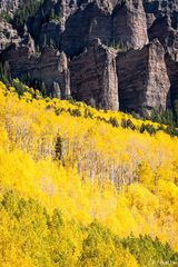 Owl Creek Pass, yellow aspen, aspen, pinnacles, High Mesa, Colorado, San Juan National Forest, contrast