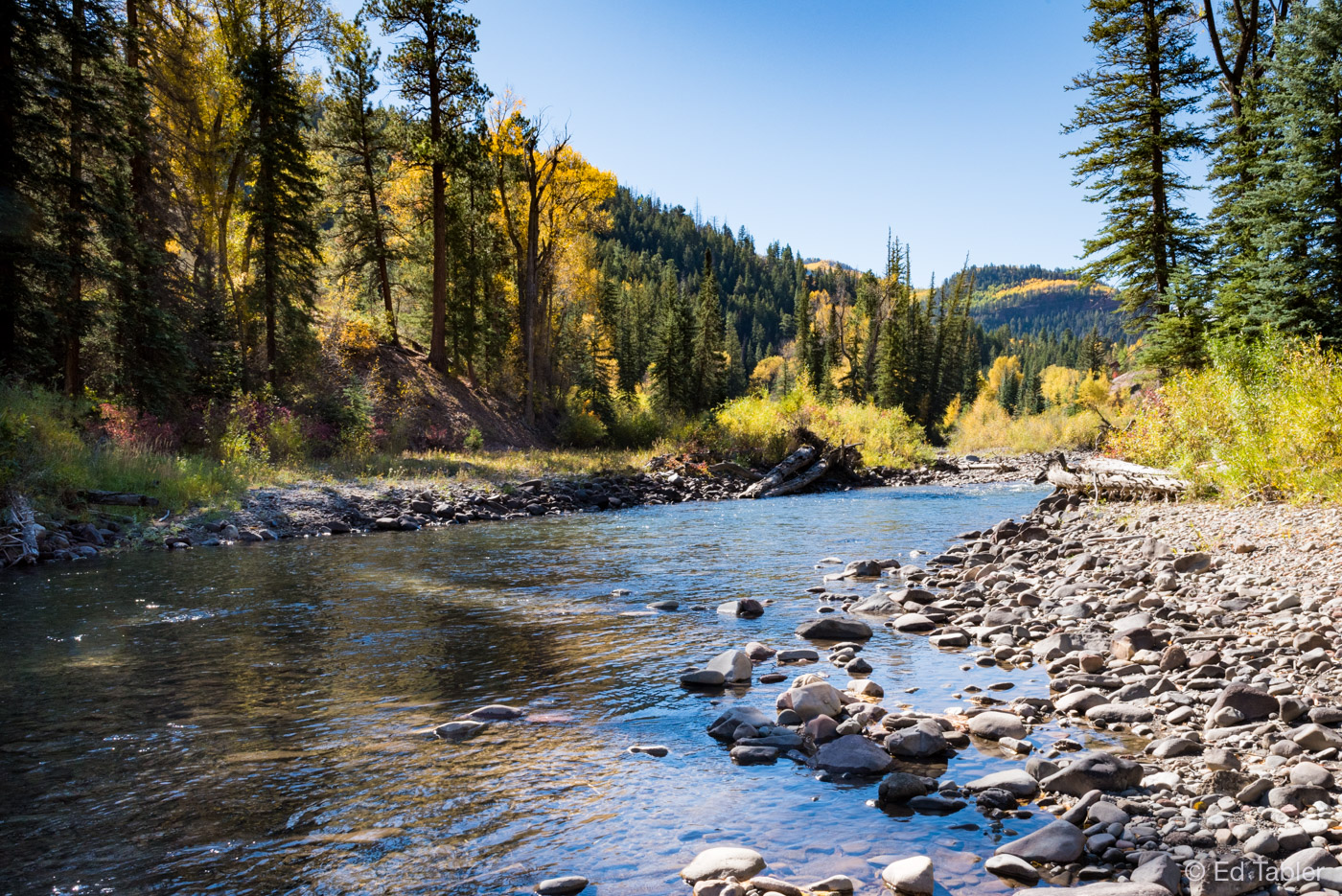 Autumn morning alongCrystal River south of Carbondale, Colorado.