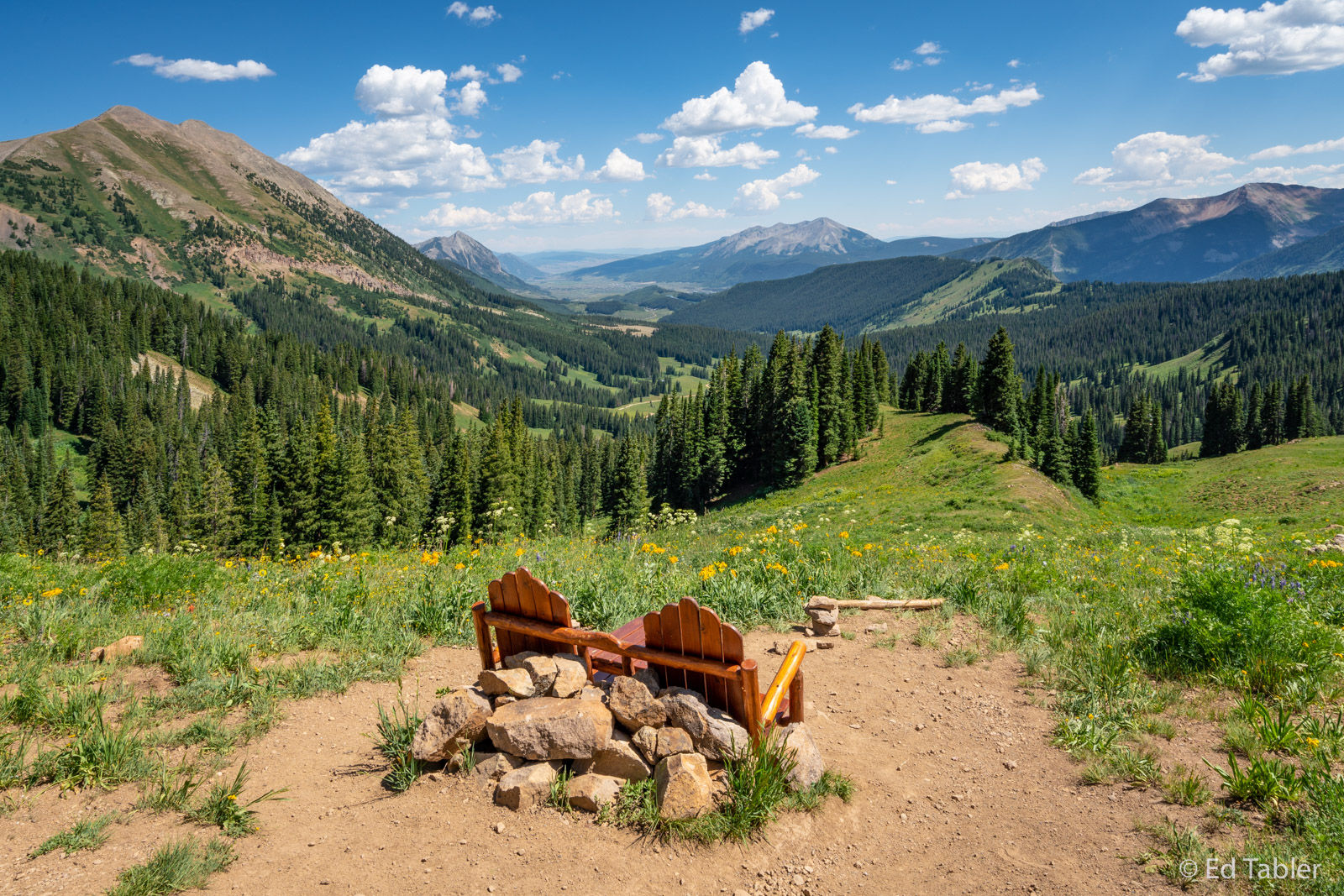 Wildflowers, Crested Butte, Washington Gulch, Chairs, Gunnison National Forest, photo