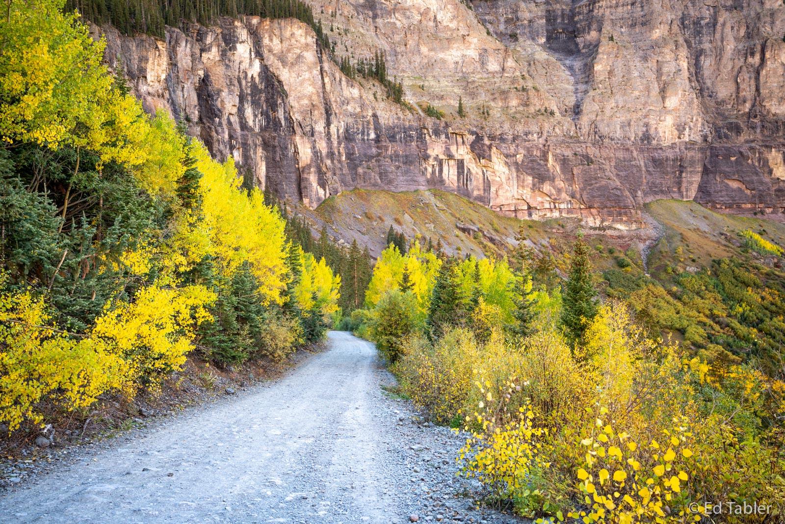 Black Bear Road, Telluride, fall, colors, Uncompahgre National Forest, Colorado