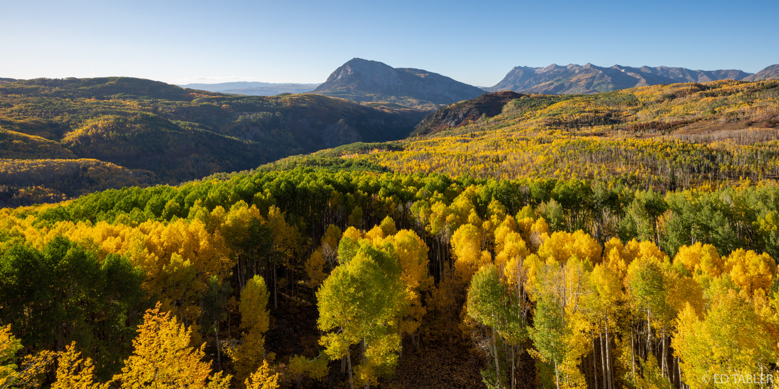 fall, autumn, aspen, Ruby Anthracite Creek, Marcellina Mountain, Raggeds Wilderness, photo